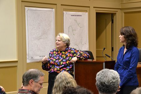 MMO & Rep. Stephanie Stuckey Benfield at Town Hall Meeting